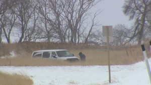 Suspect shot dead after officer assaulted, weapon and van stolen: Manitoba RCMP