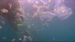 Pressure on Canada to ban plastic bags, straws