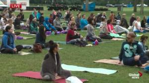 Edmontonians welcome summer with morning yoga practice in the park