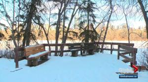 Task of maintaining Edmonton's river valley trails