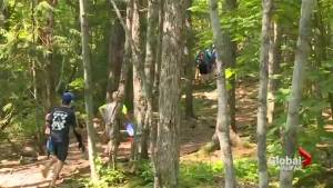 Controversial report on wilderness park to be debated at council