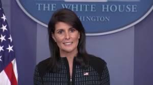 U.S. has 'strangled' North Korea's economy through sanctions: Haley