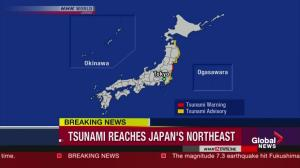Raw video: Earthquake, tsunami hits Japan