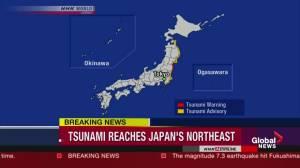 Raw video: Earthquake, tsunami hits Japan