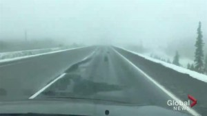 Wet, slushy conditions on Highway 97C