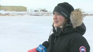 Regina Humane Society warns pet owners about cold weather