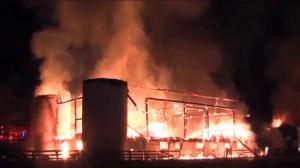 At least 16 horses killed in massive fire at Toronto stable