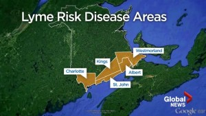 Risk of Lyme disease spreads to two more New Brunswick areas