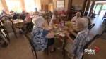 Quebec parties aim to woo seniors