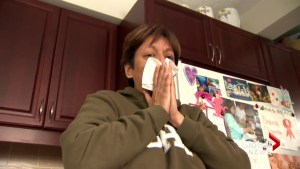 New Brunswick sees second wave of flu spread across the province