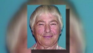 N.S. woman, 81, missing after sleeping in vehicle overnight in Musquodoboit Valley