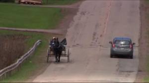 Amish influx in Prince Edward Island