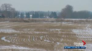 University of Alberta report delves into urban encroachment on high quality farmland
