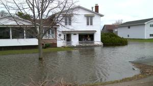 Southern New Brunswick still flooded as waters slowly recede