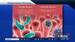 New research reinforces importance of maintaining healthy gut bacteria