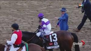 Horse racing experts stress the importance of jockeys