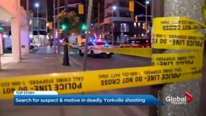 Toronto's latest murder victim shot to death in Yorkville