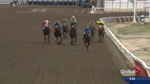Last lap for horse racing at Northlands Park