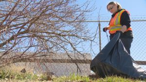 Volunteers clean up Regina's North Central following viral video