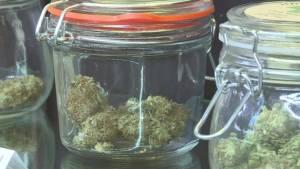 Medical marijuana dispensary opens in Saint John