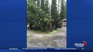 Sundre campground suffers damage in summer storm