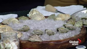 Rodney's Oyster Festival celebrating OceanWise sustainable seafood