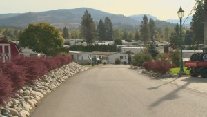 Okanagan Falls woman thankful for generosity of neighbours in aftermath of thanksgiving Sunday fire