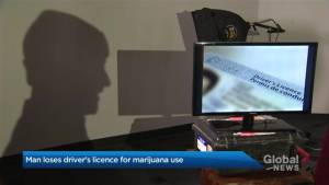 Toronto man loses driver's licence for smoking marijuana (01:52)