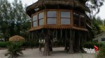 U.S. Supreme Court to hear case of Florida couple's treehouse