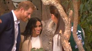 Prince Harry and newly expecting Duchess of Sussex Meghan meet koalas at Australian zoo
