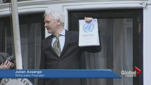Julian Assange claims total vindication with UN panel ruling