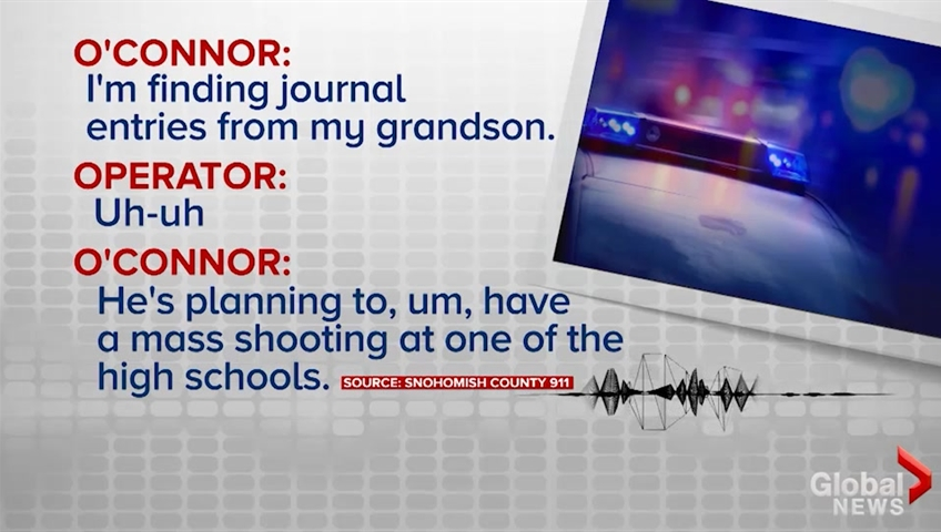 Grandma stops school shooting after discovering grandson's plot