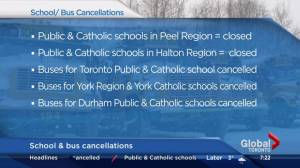 Schools closed, buses cancelled as winter blast leaves Southern Ontario iced over (02:17)