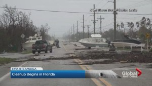 Cleanup begins in Florida
