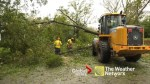 Hurricane Florence: Crews in North Carolina remove trees uprooted by storm