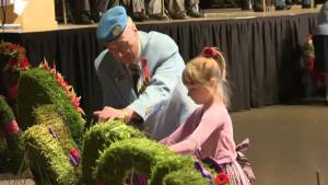 Winnipeg pauses to remember fallen soldiers on Remembrance Day