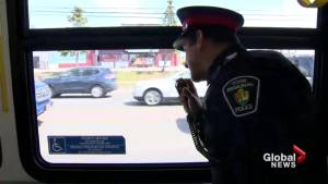 York police use buses to catch distracted divers