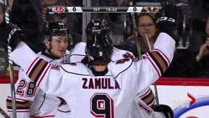 Hurricanes drop Game 4 as Calgary Hitmen tie playoff series