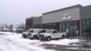 How likely will Kingston be awarded a pot shop in the cannabis retail lottery?