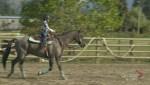 Kelowna ranch teaches rodeo skills