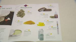 Saskatoon dispensary attempts to cash in on the recreational cannabis green rush
