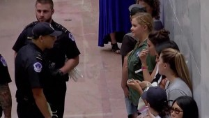 Comedian Amy Schumer detained during Kavanaugh protest