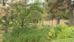 'It's just low:' Theft from donation boxes at Summerland Ornamental Gardens