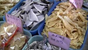 Canada's new shark fin ban sets example for the world