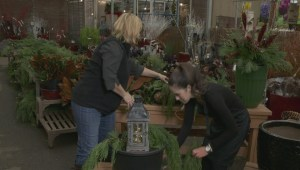 GardenWorks: Winter accent planter