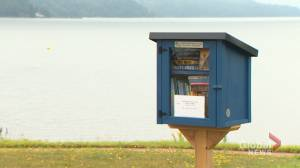Small box installed on banks of St. John River offers access to collection of books