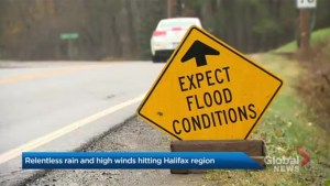 Rain, wind warnings issued across Nova Scotia