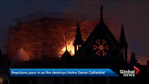 People around the world react to fire at historic Notre Dame Cathedral in Paris