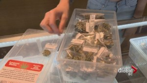 Figures show City of Vancouver has collected a small percentage of marijuana dispensary fines