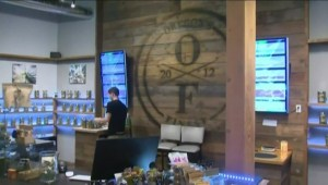 Marijuana expo opens in Vancouver